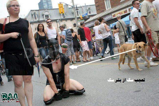 انسانهای سگ نما در انگلستان